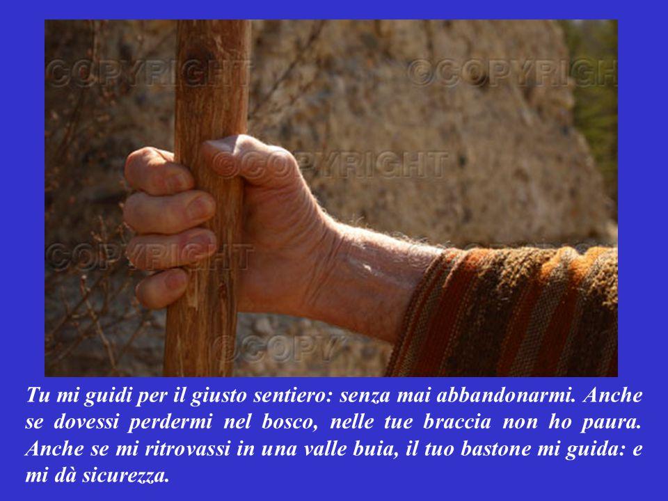 SALMO RESPONSORIALE (Salmo 22,2-6) Così pregava Davide, il pastore divenuto re: Mio Dio, io sono la tua pecorella e Tu il mio Pastore: che non mi fa mancare niente.