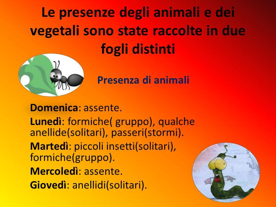 Le presenze degli animali e dei vegetali sono state raccolte in due fogli distinti Presenza di animali Domenica: assente.