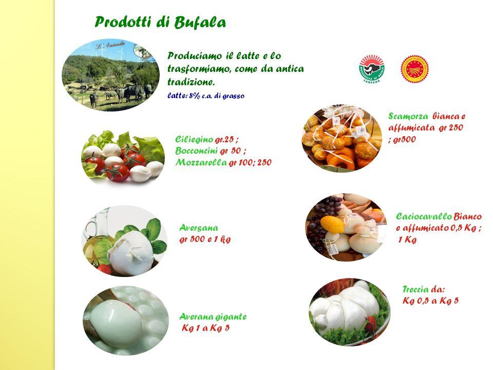 Ricotta da gr 100 a Kg 2 Formaggio di Bufala, fresco, semistagionato, stagionato pezzatura 2,5 kg ca Formaggio di Bufala, farciti pezzatura 1; 2,5 kg ca