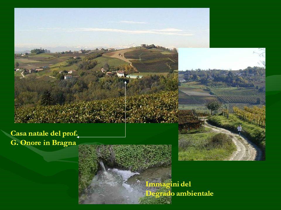 Casa natale del prof. G. Onore in Bragna Immagini del Degrado ambientale