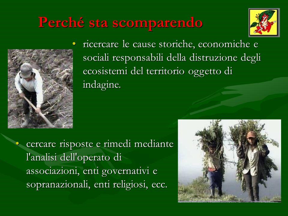 Le Mostre CREARLEGGENDO: Canelli 2001 - 2002