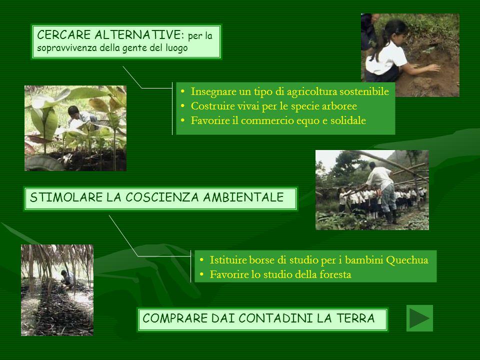 CERCARE ALTERNATIVE: per la sopravvivenza della gente del luogo STIMOLARE LA COSCIENZA AMBIENTALE Insegnare un tipo di agricoltura sostenibile Costrui