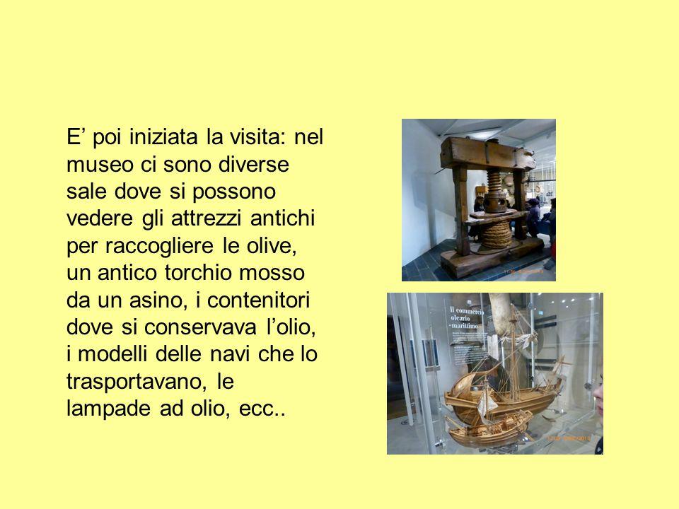 E' poi iniziata la visita: nel museo ci sono diverse sale dove si possono vedere gli attrezzi antichi per raccogliere le olive, un antico torchio mosso da un asino, i contenitori dove si conservava l'olio, i modelli delle navi che lo trasportavano, le lampade ad olio, ecc..