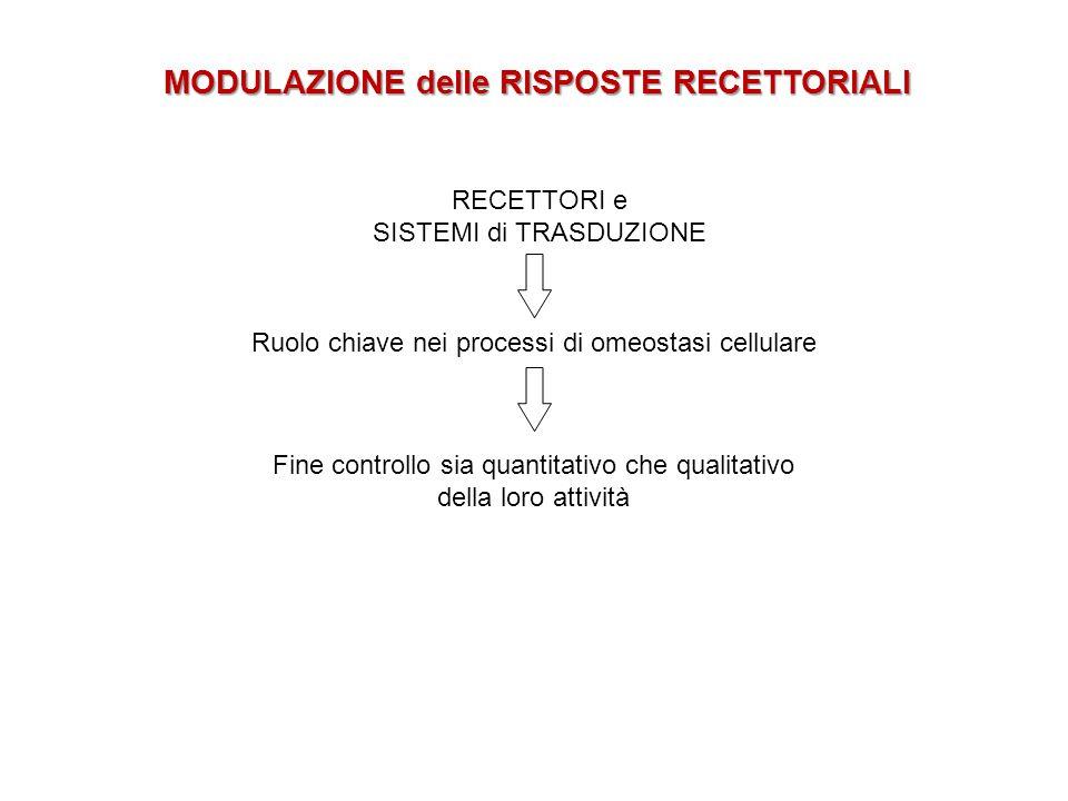 MODULAZIONE delle RISPOSTE RECETTORIALI RECETTORI e SISTEMI di TRASDUZIONE Ruolo chiave nei processi di omeostasi cellulare Fine controllo sia quantit