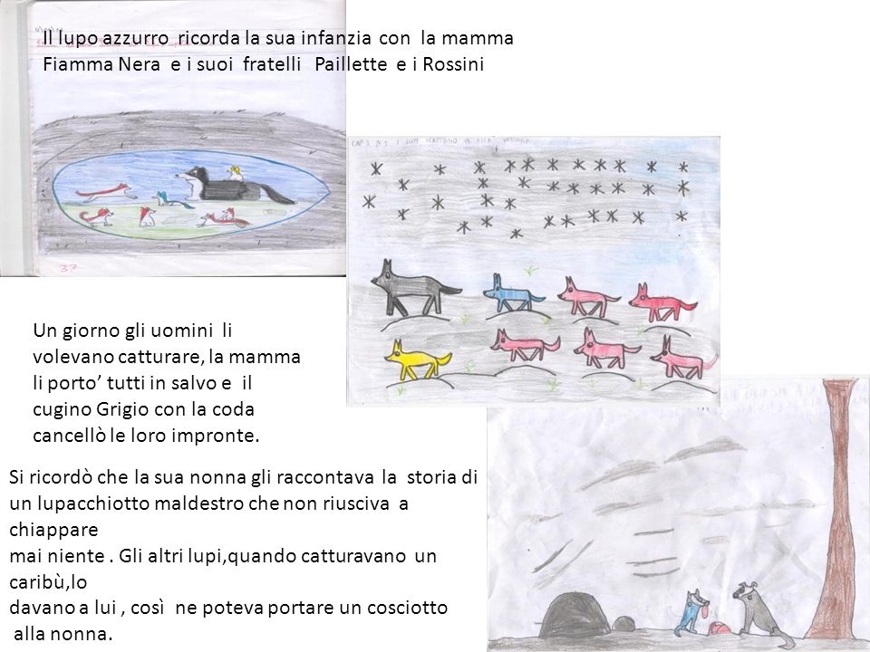 Il lupo azzurro ricorda la sua infanzia con la mamma Fiamma Nera e i suoi fratelli Paillette e i Rossini Un giorno gli uomini li volevano catturare, l