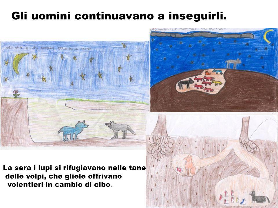Gli uomini continuavano a inseguirli. La sera i lupi si rifugiavano nelle tane delle volpi, che gliele offrivano volentieri in cambio di cibo.