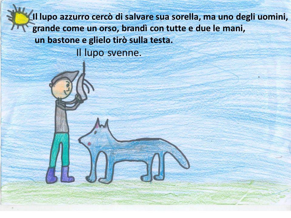 Il lupo azzurro cercò di salvare sua sorella, ma uno degli uomini, grande come un orso, brandì con tutte e due le mani, un bastone e glielo tirò sulla