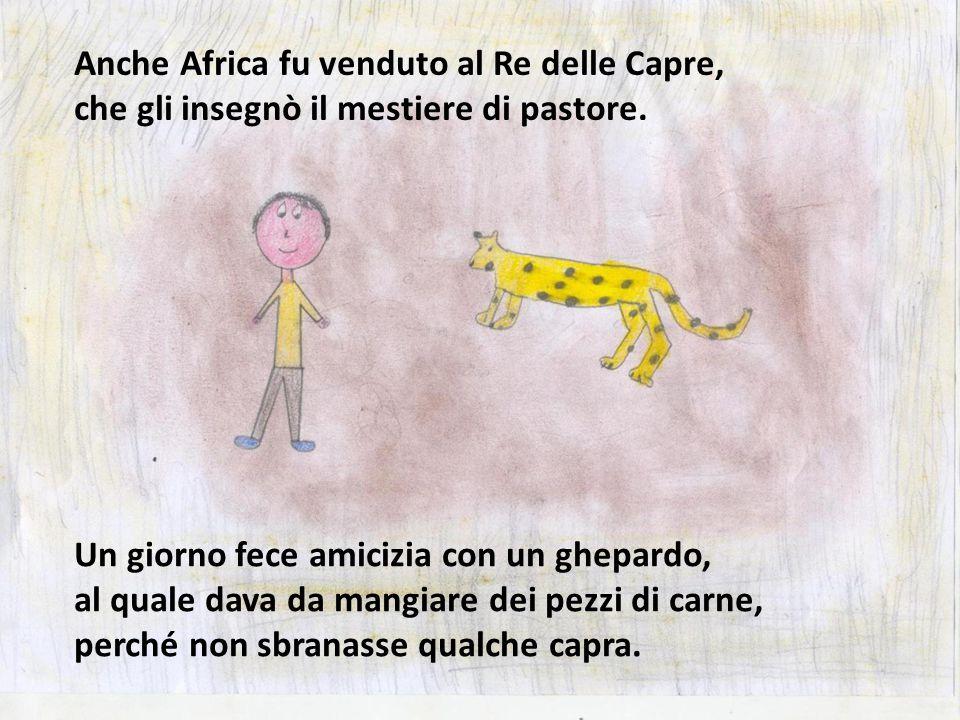 Un giorno fece amicizia con un ghepardo, al quale dava da mangiare dei pezzi di carne, perché non sbranasse qualche capra. Anche Africa fu venduto al