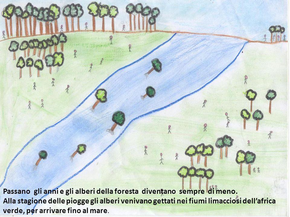Passano gli anni e gli alberi della foresta diventano sempre di meno. Alla stagione delle piogge gli alberi venivano gettati nei fiumi limacciosi dell