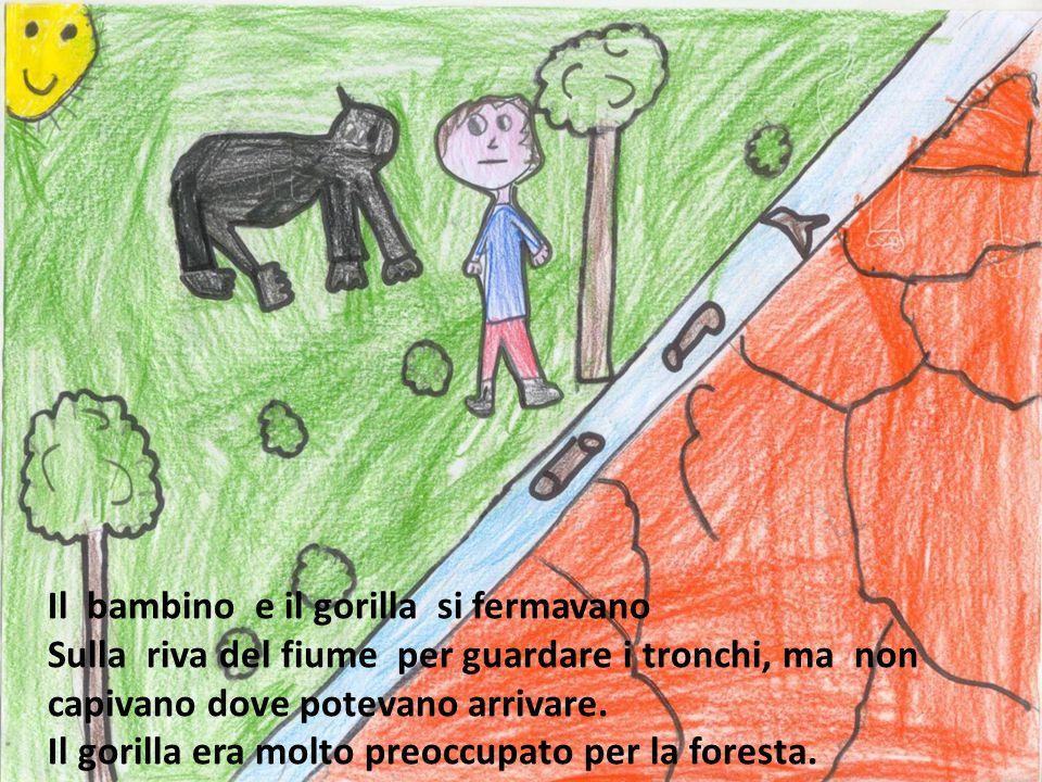 Il bambino e il gorilla si fermavano Sulla riva del fiume per guardare i tronchi, ma non capivano dove potevano arrivare. Il gorilla era molto preoccu