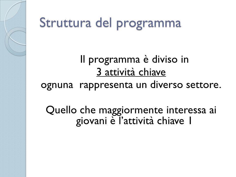 Struttura del programma Il programma è diviso in 3 attività chiave ognuna rappresenta un diverso settore. Quello che maggiormente interessa ai giovani