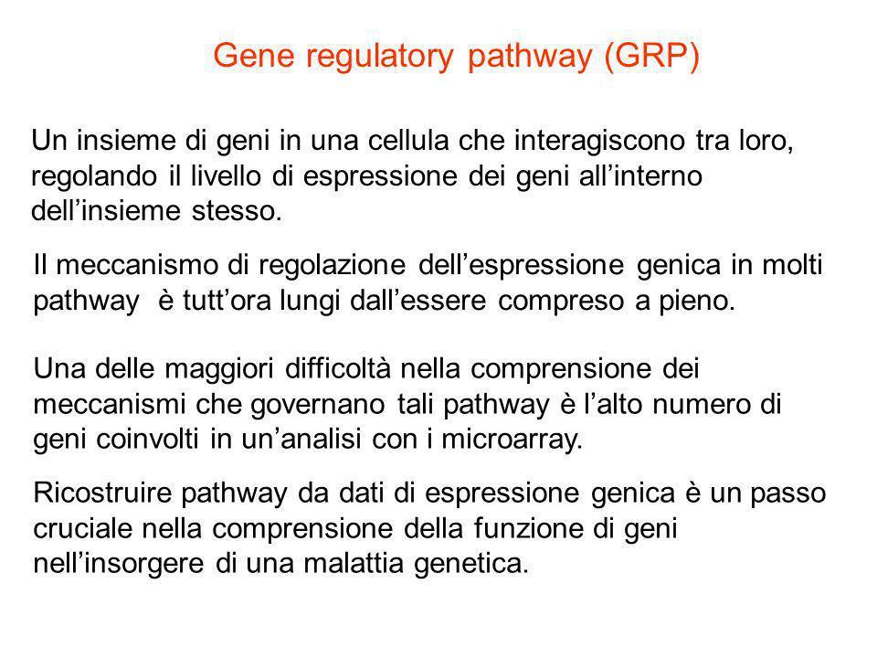 Un insieme di geni in una cellula che interagiscono tra loro, regolando il livello di espressione dei geni all'interno dell'insieme stesso. Gene regul