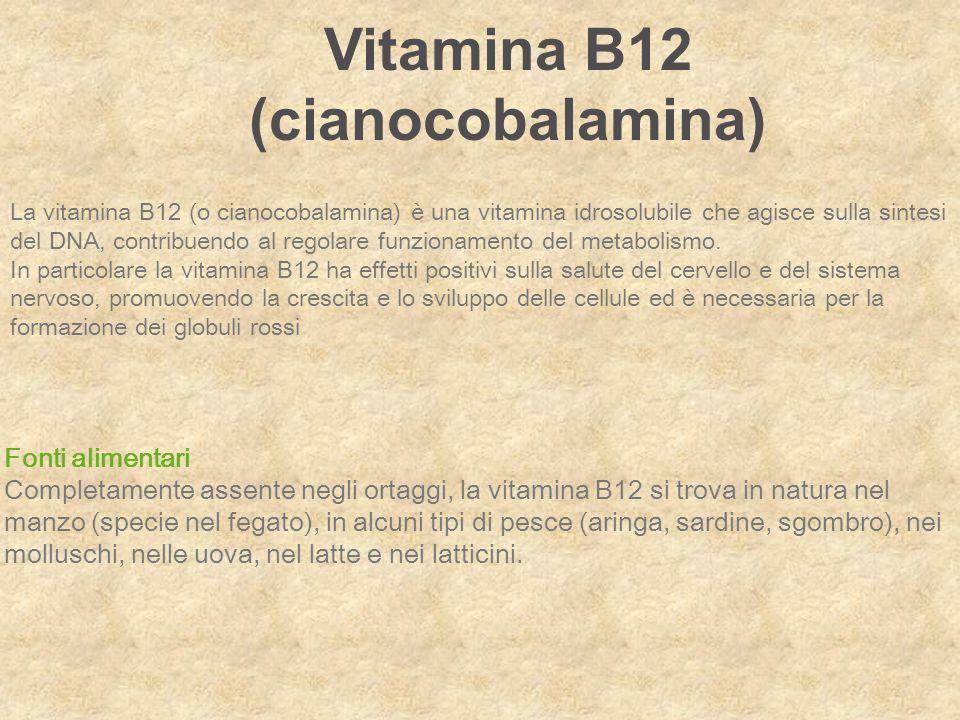 La vitamina B12 (o cianocobalamina) è una vitamina idrosolubile che agisce sulla sintesi del DNA, contribuendo al regolare funzionamento del metabolis