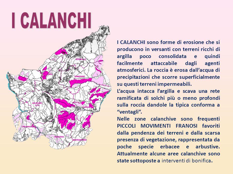 I CALANCHI sono forme di erosione che si producono in versanti con terreni ricchi di argilla poco consolidata e quindi facilmente attaccabile dagli ag