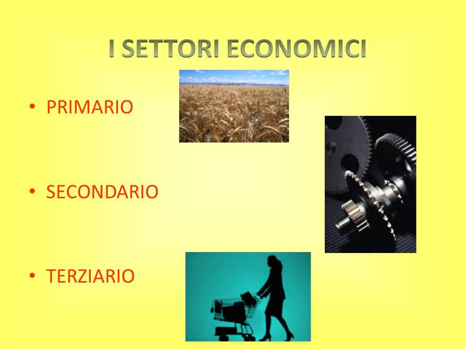 PRIMARIO SECONDARIO TERZIARIO