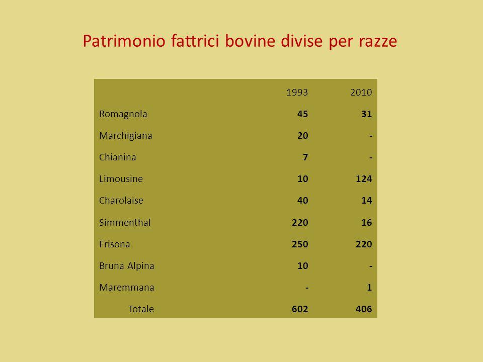 Patrimonio fattrici bovine divise per razze 19932010 Romagnola 4531 Marchigiana 20 - Chianina 7 - Limousine 10124 Charolaise 4014 Simmenthal22016 Fris