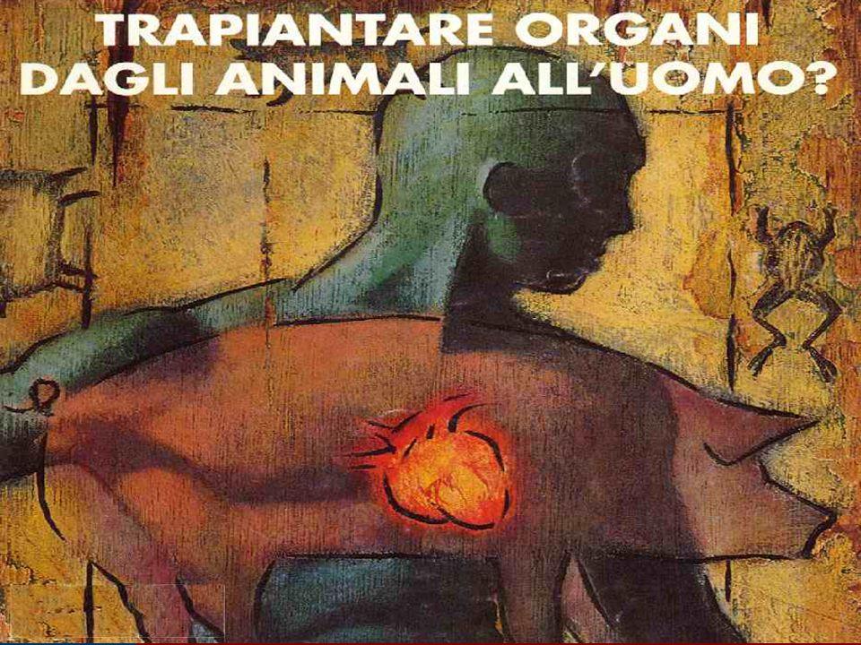 n Introdurre una teoria del valore intrinseco della vita animale cambia i termini del dibattito morale: dovrò sempre avere una giustificazione adeguata per sopprimere o manipolare un animale.