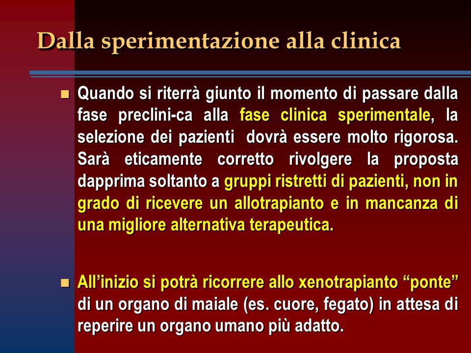 Dalla sperimentazione alla clinica n Quando si riterrà giunto il momento di passare dalla fase preclini-ca alla fase clinica sperimentale, la selezion
