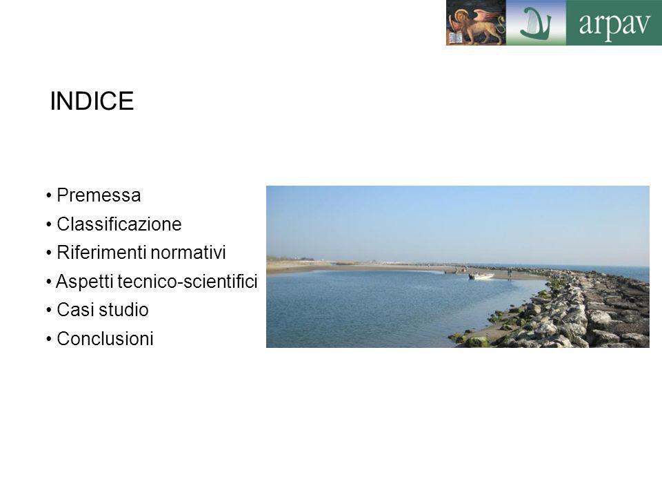 INDICE Premessa Classificazione Riferimenti normativi Aspetti tecnico-scientifici Casi studio Conclusioni
