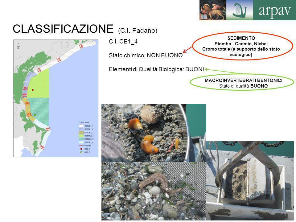 CLASSIFICAZIONE (C.I. Padano) C.I. CE1_4 Stato chimico: NON BUONO Elementi di Qualità Biologica: BUONI SEDIMENTO Piombo, Cadmio, Nichel Cromo totale (