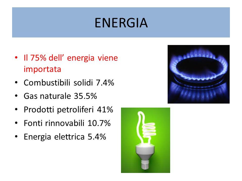 ENERGIA Il 75% dell' energia viene importata Combustibili solidi 7.4% Gas naturale 35.5% Prodotti petroliferi 41% Fonti rinnovabili 10.7% Energia elet