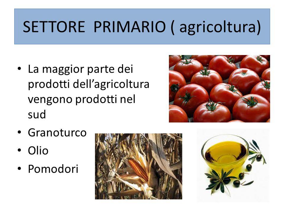 SETTORE PRIMARIO ( agricoltura) La maggior parte dei prodotti dell'agricoltura vengono prodotti nel sud Granoturco Olio Pomodori