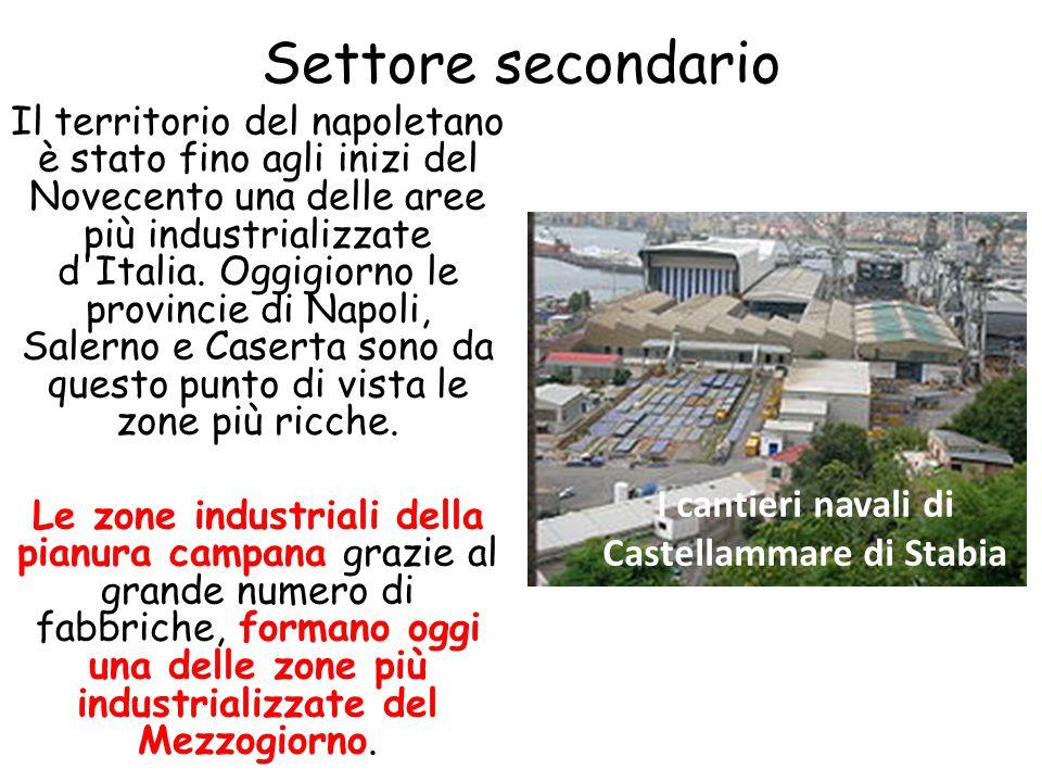 Settore secondario Il territorio del napoletano è stato fino agli inizi del Novecento una delle aree più industrializzate d'Italia. Oggigiorno le prov