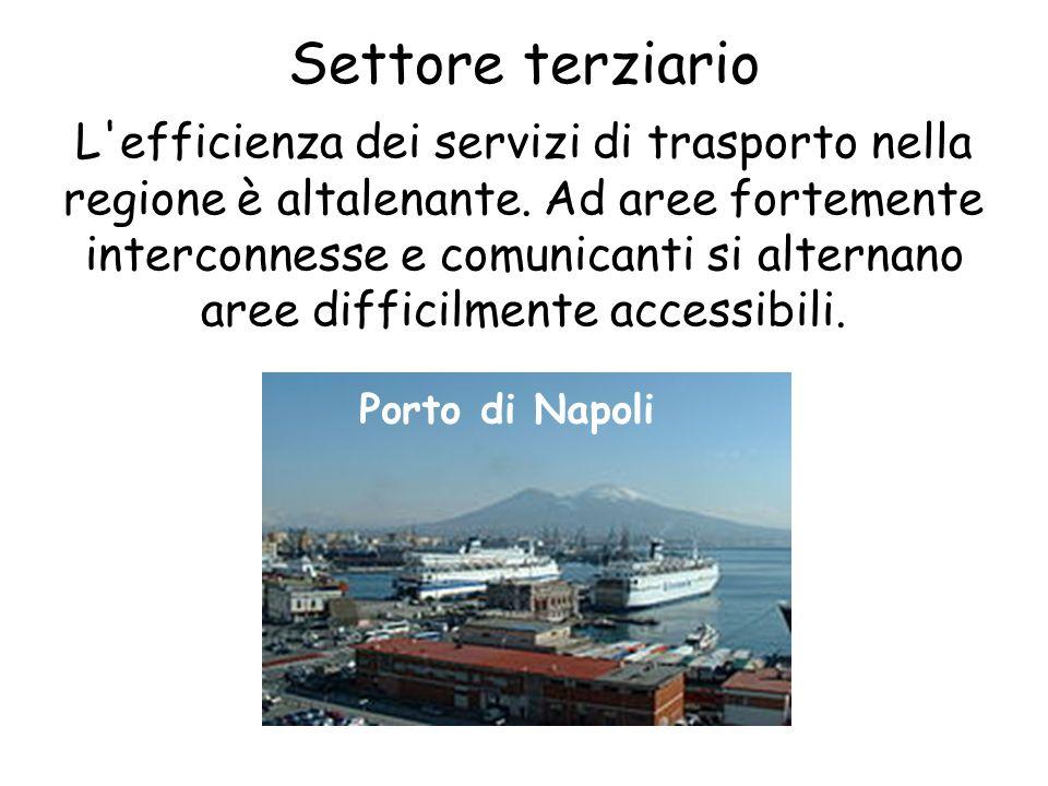 Settore terziario L'efficienza dei servizi di trasporto nella regione è altalenante. Ad aree fortemente interconnesse e comunicanti si alternano aree
