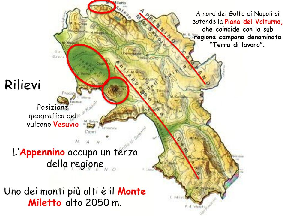 Rilievi L'Appennino occupa un terzo della regione Uno dei monti più alti è il Monte Miletto alto 2050 m. A nord del Golfo di Napoli si estende la Pian