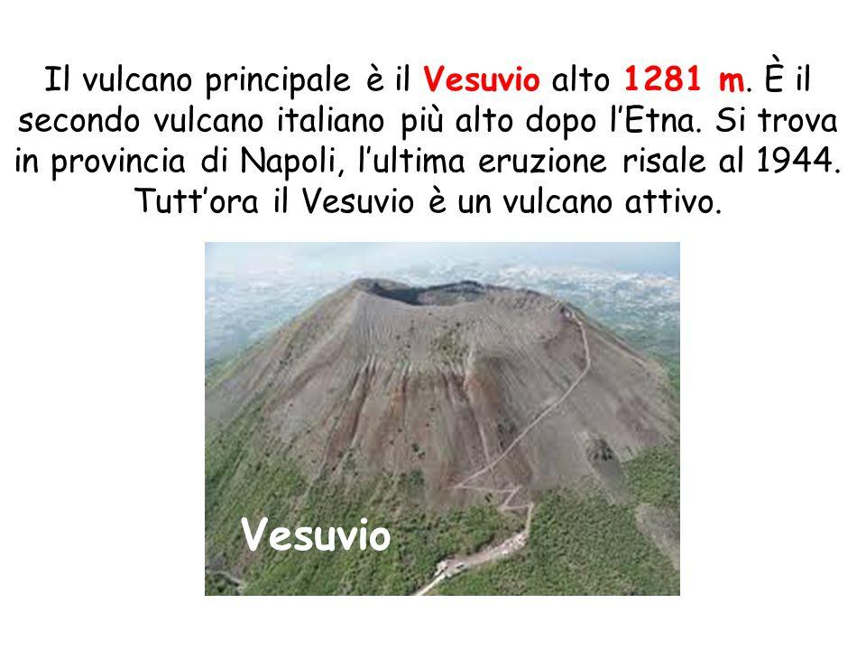 Il vulcano principale è il Vesuvio alto 1281 m. È il secondo vulcano italiano più alto dopo l'Etna. Si trova in provincia di Napoli, l'ultima eruzione
