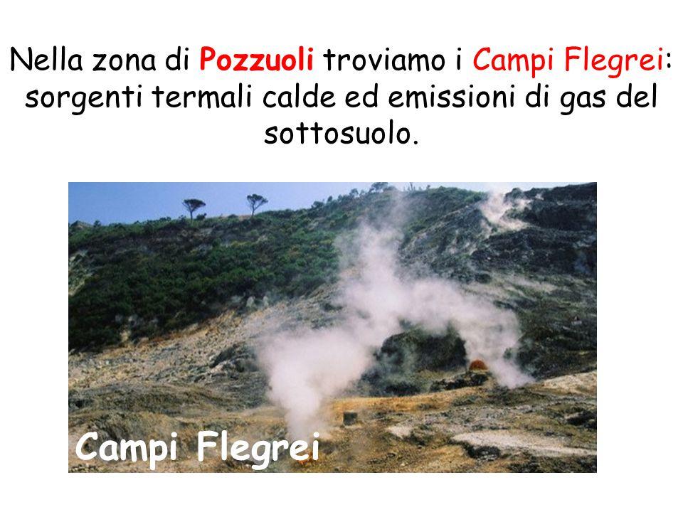Campi Flegrei Nella zona di Pozzuoli troviamo i Campi Flegrei: sorgenti termali calde ed emissioni di gas del sottosuolo.