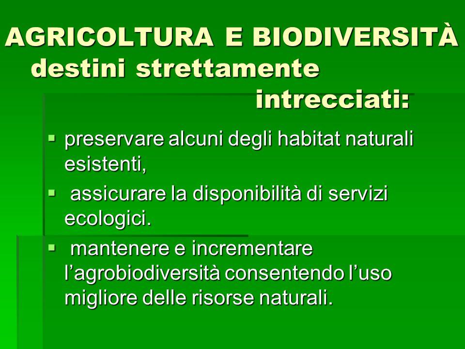 AGRICOLTURA E BIODIVERSITÀ destini strettamente intrecciati:  preservare alcuni degli habitat naturali esistenti,  assicurare la disponibilità di se