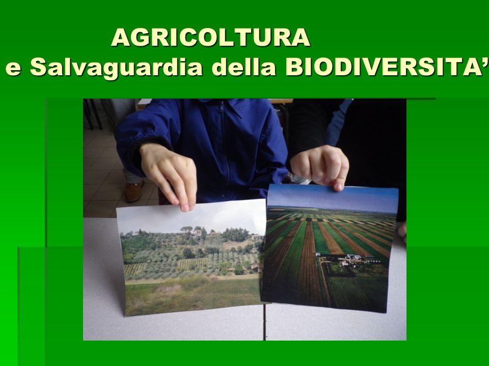 AGRICOLTURA e Salvaguardia della BIODIVERSITA' AGRICOLTURA e Salvaguardia della BIODIVERSITA'
