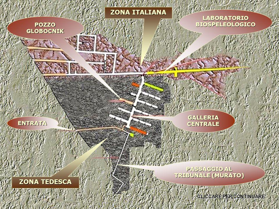ENTRATA GALLERIA CENTRALE POZZO GLOBOCNIK LABORATORIO BIOSPELEOLOGICO PASSAGGIO AL TRIBUNALE (MURATO) ZONA TEDESCA ZONA ITALIANA CLICCARE PER CONTINUARE