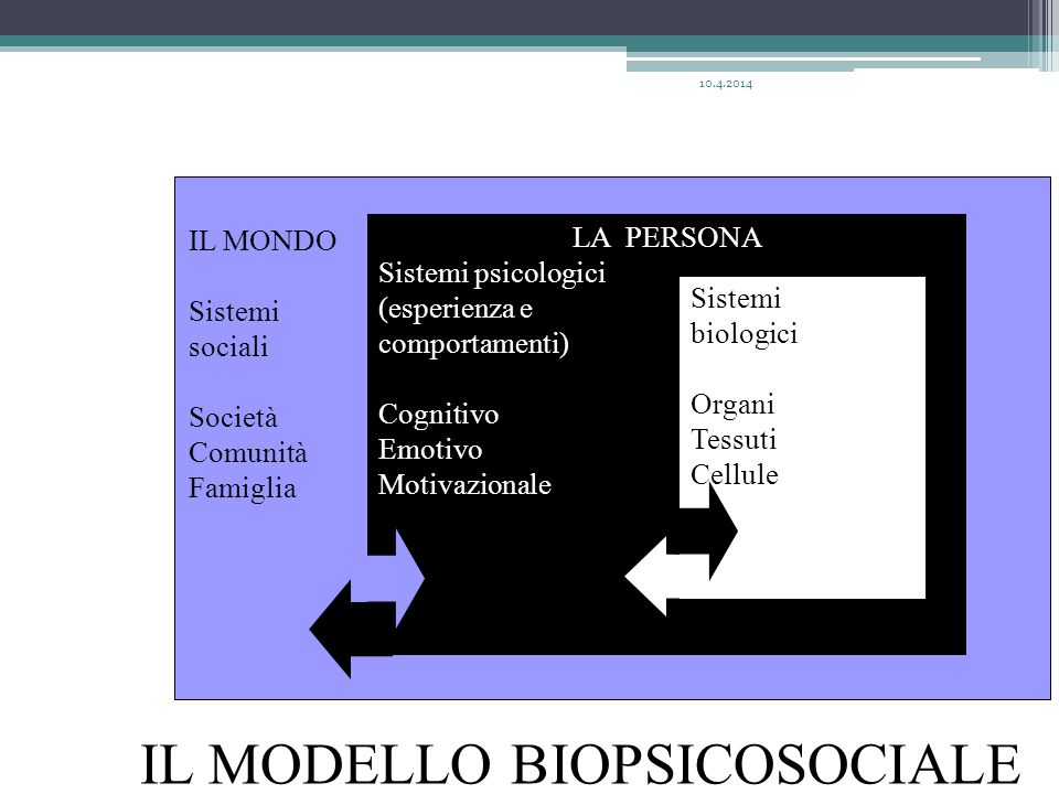 IL MONDO Sistemi sociali Società Comunità Famiglia LA PERSONA Sistemi psicologici (esperienza e comportamenti) Cognitivo Emotivo Motivazionale Sistemi biologici Organi Tessuti Cellule IL MODELLO BIOPSICOSOCIALE 10.4.2014