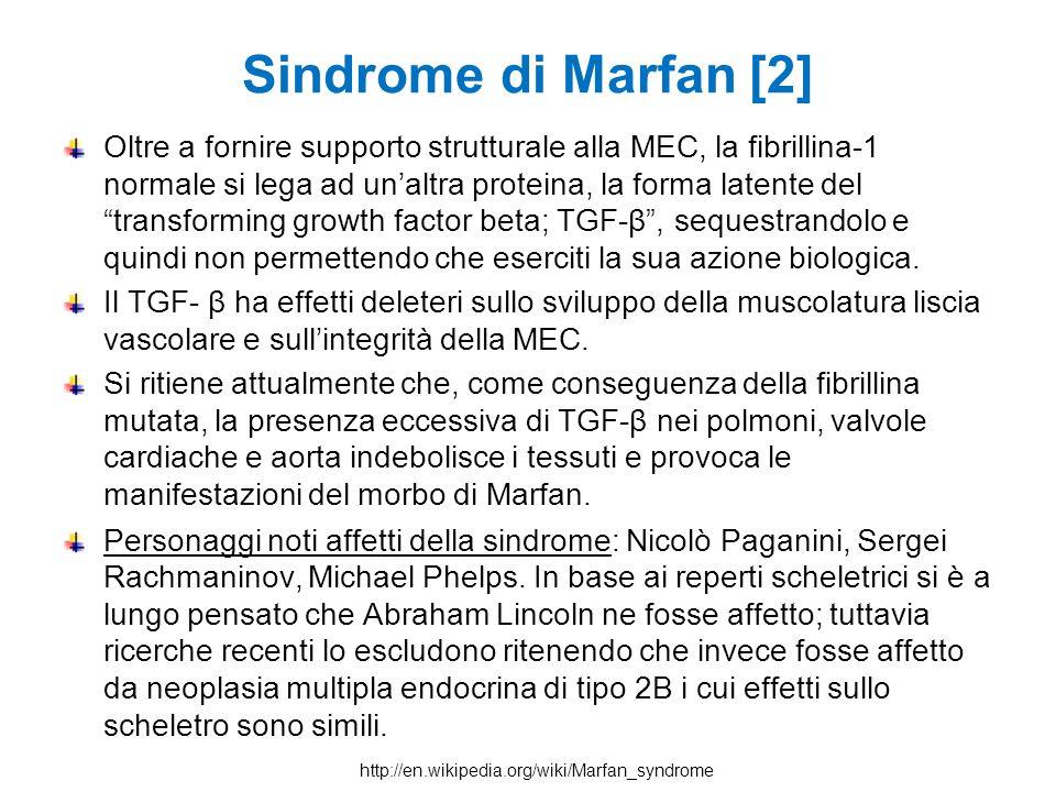 """Sindrome di Marfan [2] Oltre a fornire supporto strutturale alla MEC, la fibrillina-1 normale si lega ad un'altra proteina, la forma latente del """"tran"""