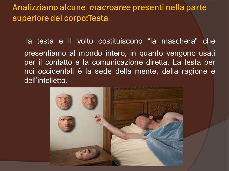 """Analizziamo alcune macroaree presenti nella parte superiore del corpo:Testa la testa e il volto costituiscono """"la maschera"""" che presentiamo al mondo i"""