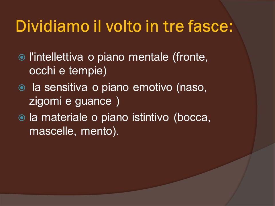 Dividiamo il volto in tre fasce:  l'intellettiva o piano mentale (fronte, occhi e tempie)  la sensitiva o piano emotivo (naso, zigomi e guance )  l