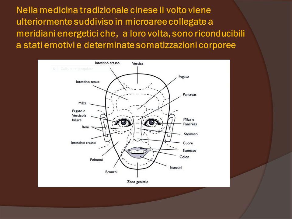 Nella medicina tradizionale cinese il volto viene ulteriormente suddiviso in microaree collegate a meridiani energetici che, a loro volta, sono ricond