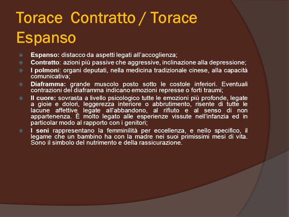 Torace Contratto / Torace Espanso  Espanso: distacco da aspetti legati all'accoglienza;  Contratto: azioni più passive che aggressive, inclinazione