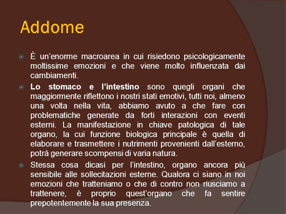 Addome  È un'enorme macroarea in cui risiedono psicologicamente moltissime emozioni e che viene molto influenzata dai cambiamenti.  Lo stomaco e l'i