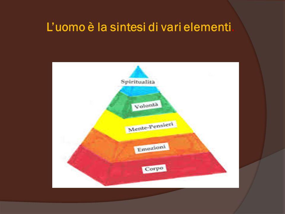 L'uomo è la sintesi di vari elementi.
