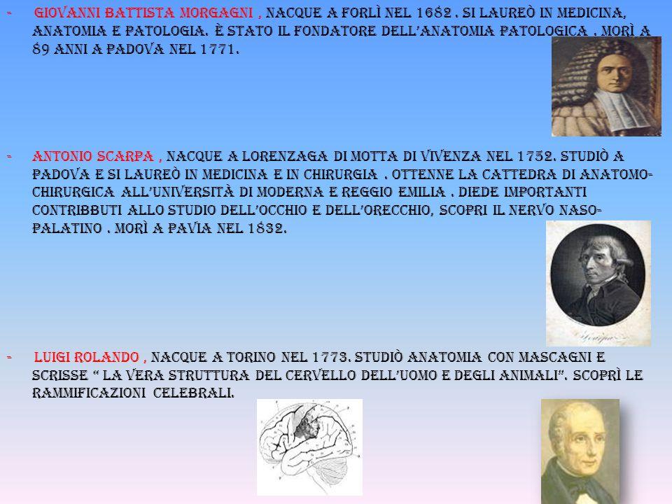 - Giovanni battista morgagni, nacque a forlì nel 1682. si laureò in medicina, anatomia e patologia. È stato il fondatore dell'anatomia patologica. Mor