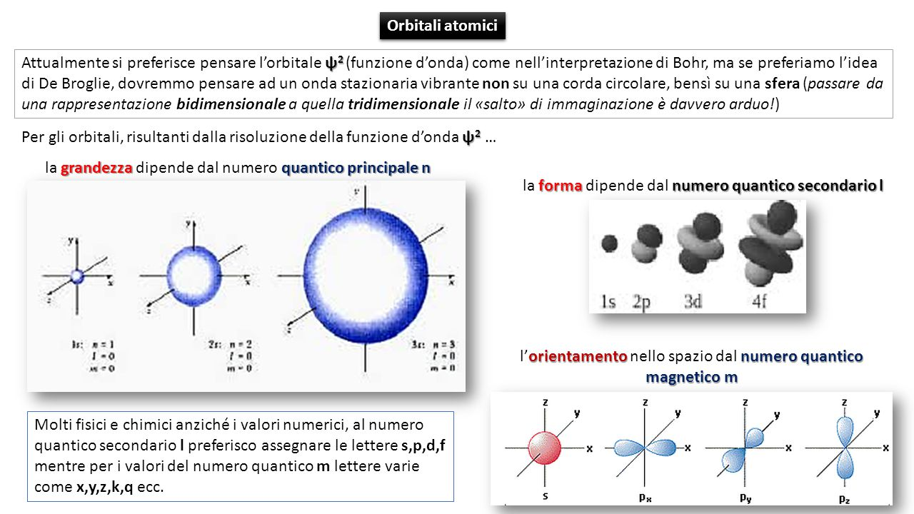 ψ 2 Per gli orbitali, risultanti dalla risoluzione della funzione d'onda ψ 2 … ψ 2 Attualmente si preferisce pensare l'orbitale ψ 2 (funzione d'onda) come nell'interpretazione di Bohr, ma se preferiamo l'idea di De Broglie, dovremmo pensare ad un onda stazionaria vibrante non su una corda circolare, bensì su una sfera (passare da una rappresentazione bidimensionale a quella tridimensionale il «salto» di immaginazione è davvero arduo!) grandezzaquantico principale n la grandezza dipende dal numero quantico principale n formanumero quantico secondario l la forma dipende dal numero quantico secondario l orientamentonumero quantico magnetico m l'orientamento nello spazio dal numero quantico magnetico m Orbitali atomici Molti fisici e chimici anziché i valori numerici, al numero quantico secondario l preferisco assegnare le lettere s,p,d,f mentre per i valori del numero quantico m lettere varie come x,y,z,k,q ecc.