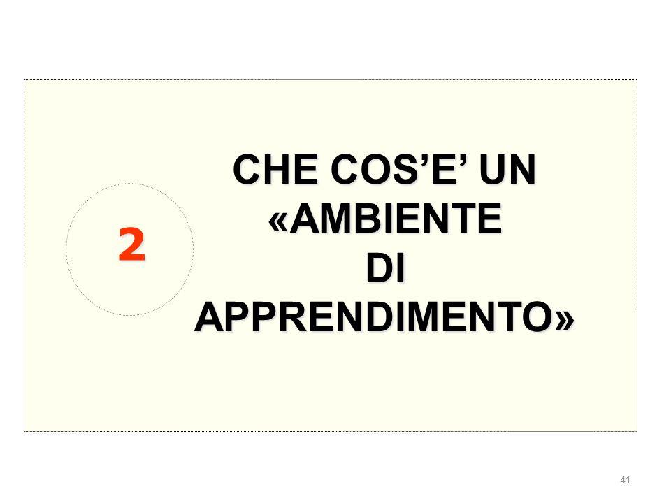41 CHE COS'E' UN «AMBIENTEDIAPPRENDIMENTO» 2