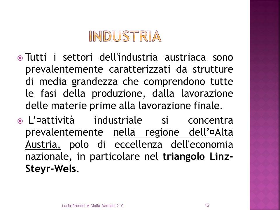 Tutti i settori dell'industria austriaca sono prevalentemente caratterizzati da strutture di media grandezza che comprendono tutte le fasi della pro