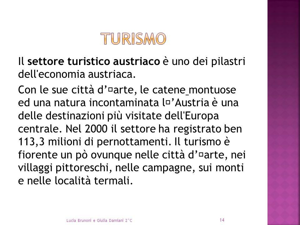 Il settore turistico austriaco è uno dei pilastri dell'economia austriaca. Con le sue città d''arte, le catene montuose ed una natura incontaminata l'