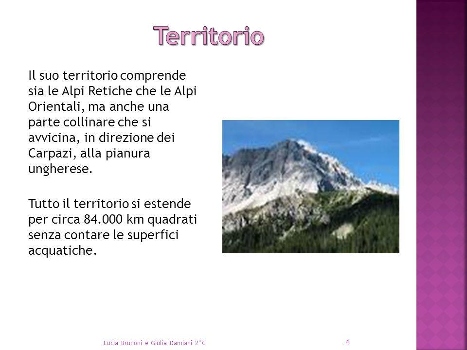 Il suo territorio comprende sia le Alpi Retiche che le Alpi Orientali, ma anche una parte collinare che si avvicina, in direzione dei Carpazi, alla pi