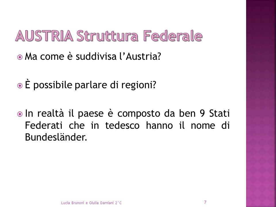  Ma come è suddivisa l'Austria?  È possibile parlare di regioni?  In realtà il paese è composto da ben 9 Stati Federati che in tedesco hanno il nom