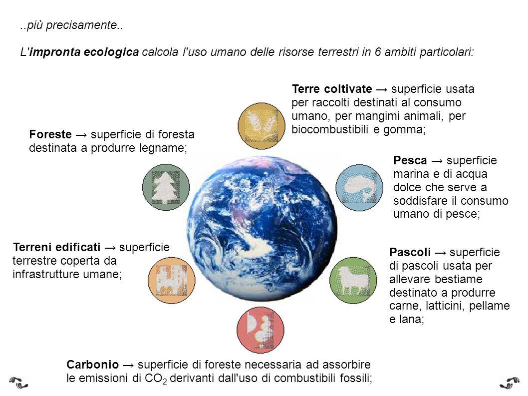 ..più precisamente.. L'impronta ecologica calcola l'uso umano delle risorse terrestri in 6 ambiti particolari: Terre coltivate → superficie usata per